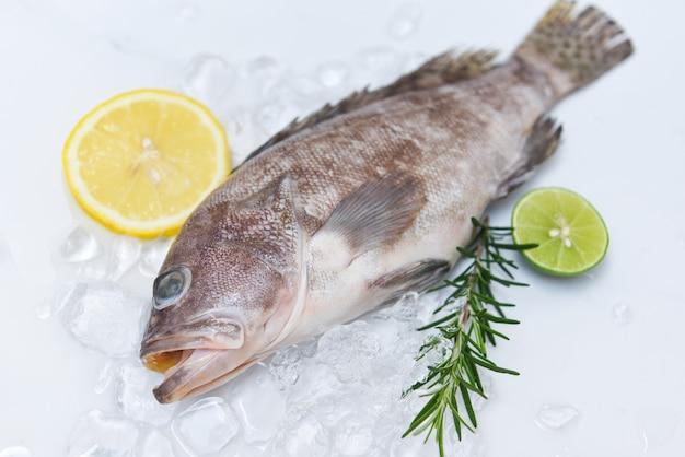 Frutos do mar crus frescos para alimentos cozidos, garoupa no gelo com alecrim e limão
