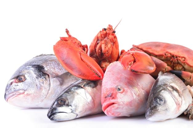 Frutos do mar em um fundo branco