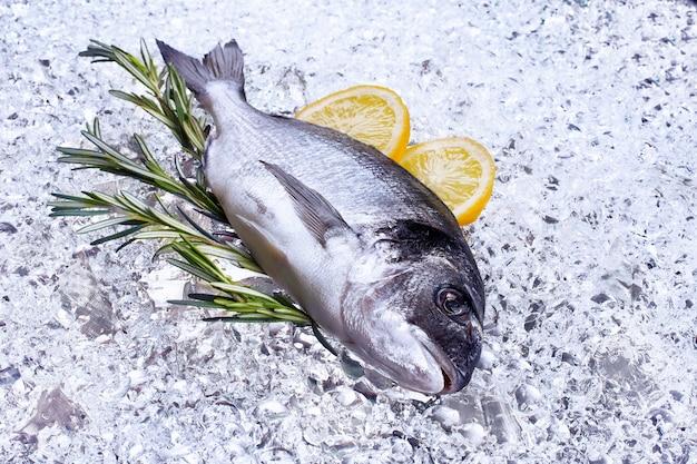 Frutos do mar frescos dourados no gelo - imagem de estoque