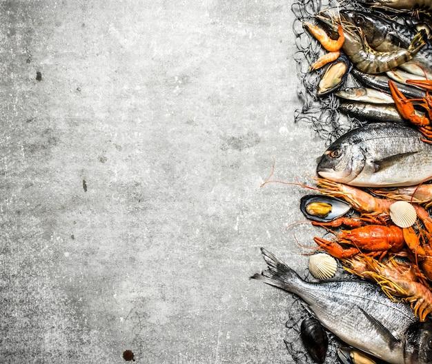 Frutos do mar frescos e crus. frutos do mar frescos com uma rede de pesca no concreto.