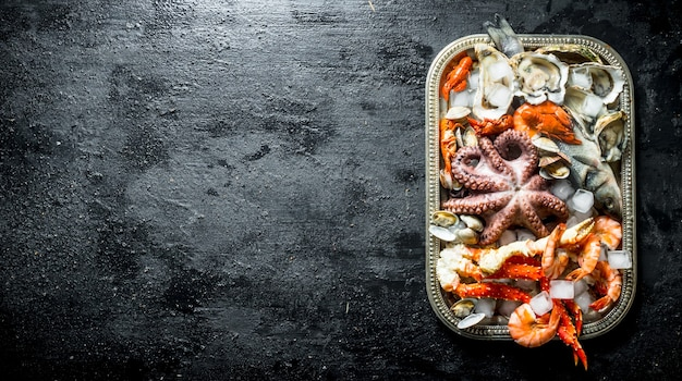 Frutos do mar frescos em uma bandeja com pedaços de gelo. sobre fundo preto rústico