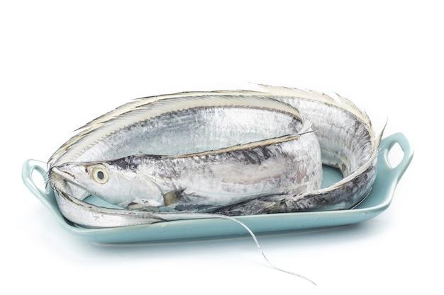 Frutos do mar frescos: hairtail em fundo branco.