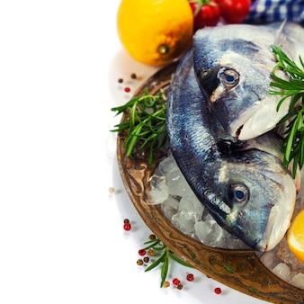 Frutos do mar frescos no gelo