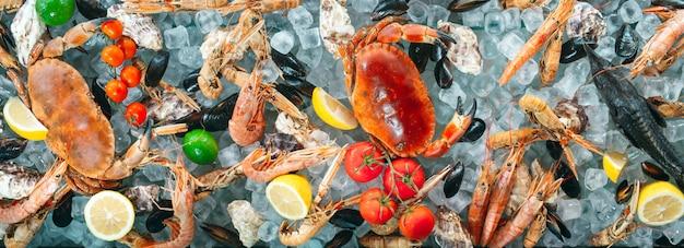 Frutos do mar no fundo do banner de gelo
