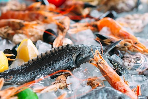 Frutos do mar no gelo. caranguejos, esturjão, marisco, camarão, rapana, dorado, em gelo branco.