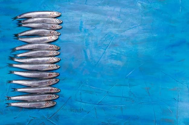 Frutos do mar. peixe de mar pequeno, anchovas, sardinhas no fundo azul. com espaço para texto
