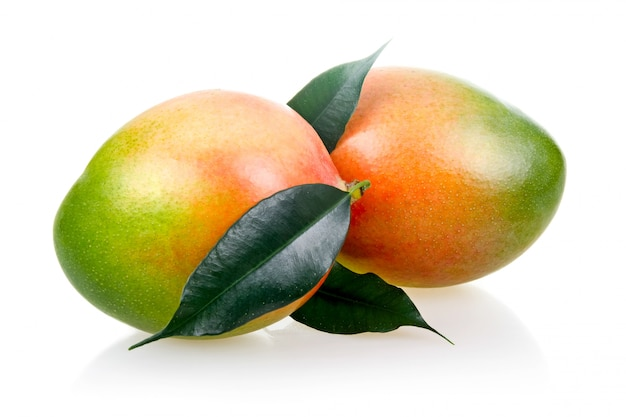 Frutos maduros de manga com folhas isoladas no fundo branco