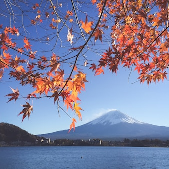 Fuji primavera snowcapped panorama neve