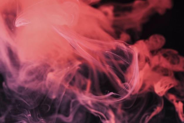 Fumaça de salmão em fundo preto