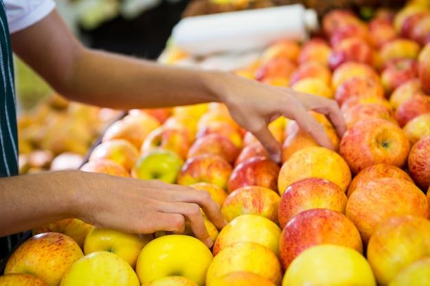 Funcionários do sexo feminino organizar frutas na seção orgânica