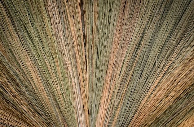 Fundo abstrato da textura da grama da vassoura.