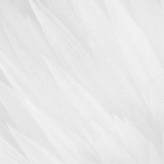 Fundo abstrato das penas decorativas brancas. foco macio.