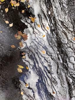 Fundo abstrato de linhas borradas com folhas de outono