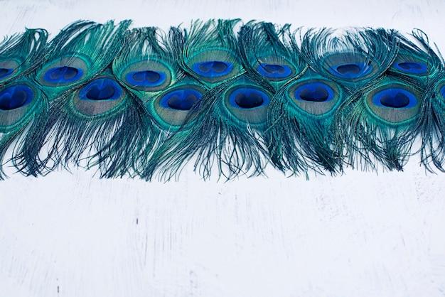 Fundo abstrato de penas brilhantes do pavão.
