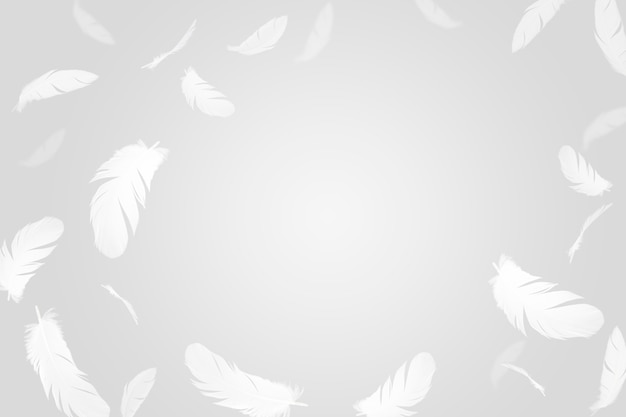 Fundo abstrato de penas. penas brancas flutuando no ar