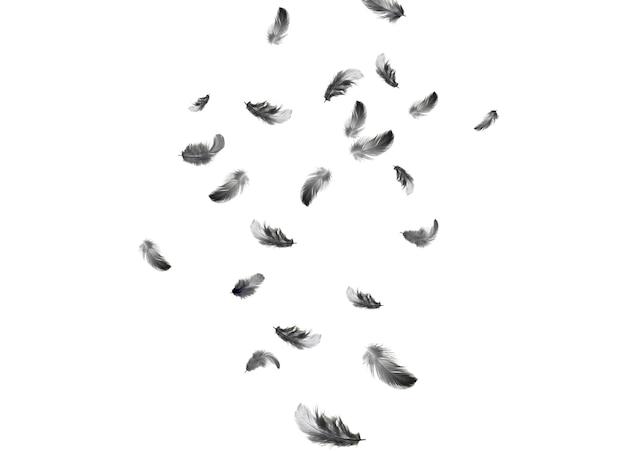 Fundo abstrato de penas. penas pretas caindo no ar