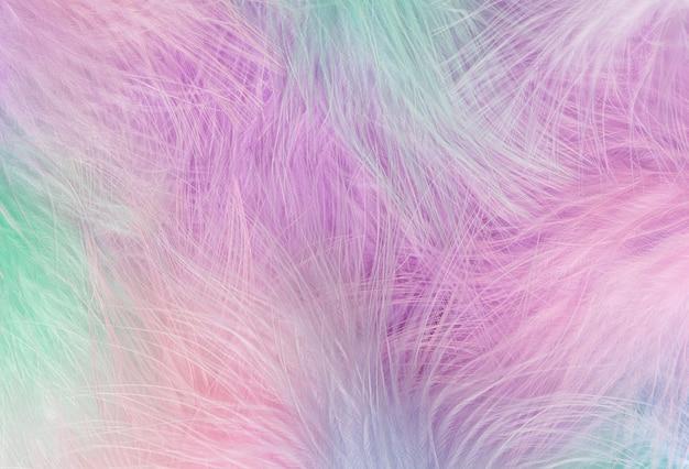 Fundo abstrato do arco-íris de penas. imagem de close up de penas macias sob pastel colorido. tiro macro, foco suave.