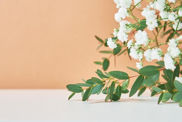 Fundo abstrato. folhas de plantas em um fundo pastel de neige com espaço de cópia