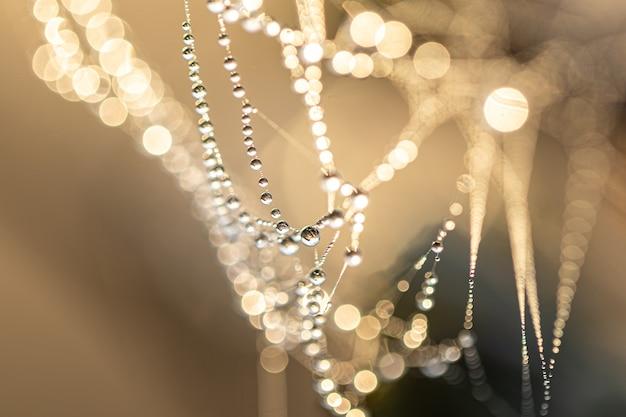 Fundo abstrato natural com gotas de orvalho cristalinas em uma teia de aranha na luz do sol com bokeh.