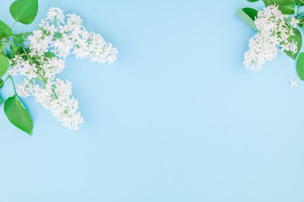 Fundo azul com flores lilás brancas