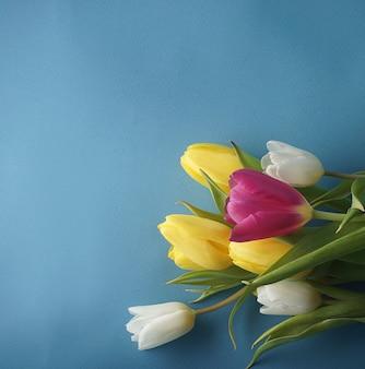Fundo azul suave e um buquê de tulipas rosa brancas e amarelas