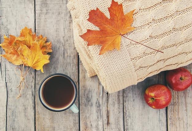 Fundo bonito de outono.