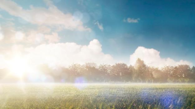 Fundo bonito. manhã no campo. uma paisagem de verão em clima quente ensolarado