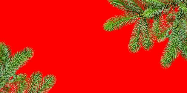 Fundo branco com uma moldura de ramos de abeto em vermelho com espaço de cópia.