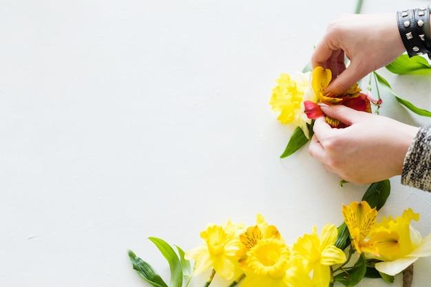 Fundo branco de arranjo de flores.