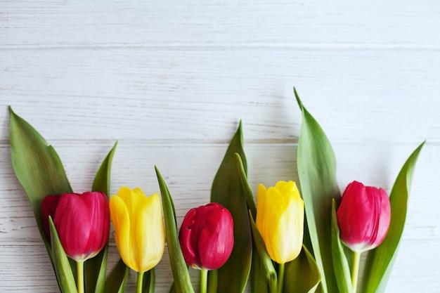 Fundo branco de madeira e tulipas vermelhas e amarelas.