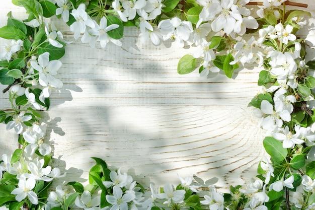 Fundo branco de madeira. flores de maçã na borda do quadro