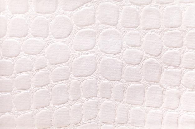 Fundo branco de um material têxtil de estofamento macio, closeup. tecido com motivos