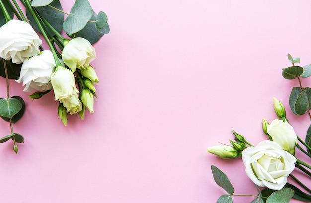 Fundo branco eustoma flores