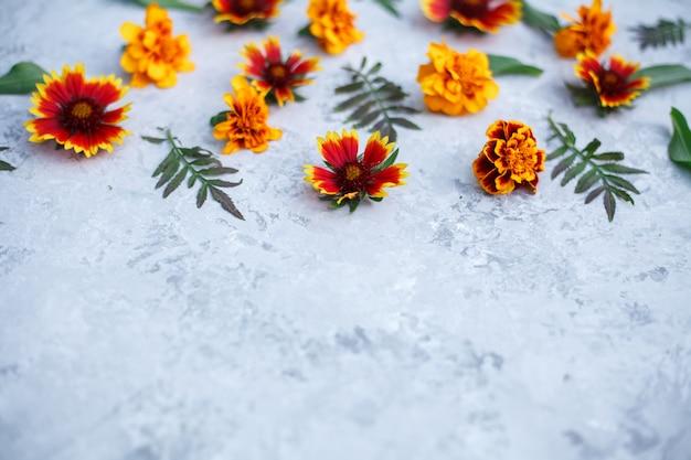 Fundo cinza com flores alaranjadas vibrantes frescas e folhas verdes. textura leve com arranjo floral, copyspace. vista superior, plana leigos. conceito de outono