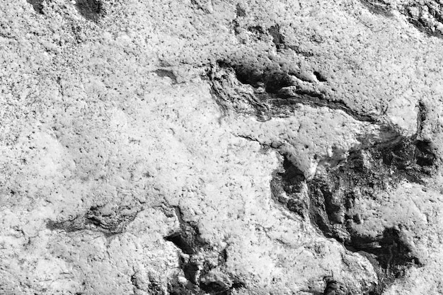 Fundo cinza com parede de pedra preta