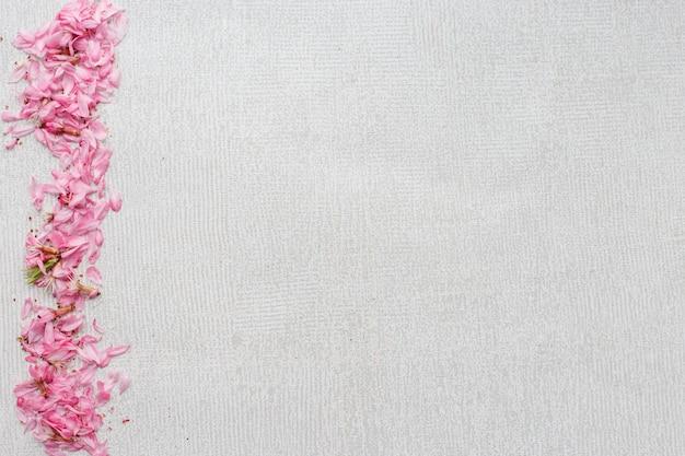 Fundo cinza com uma ampla faixa de pétalas de flores