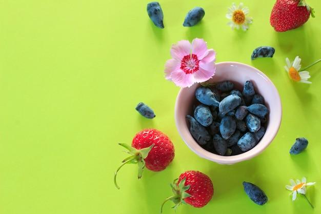 Fundo colorido com frutos de verão e flores em papel verde.