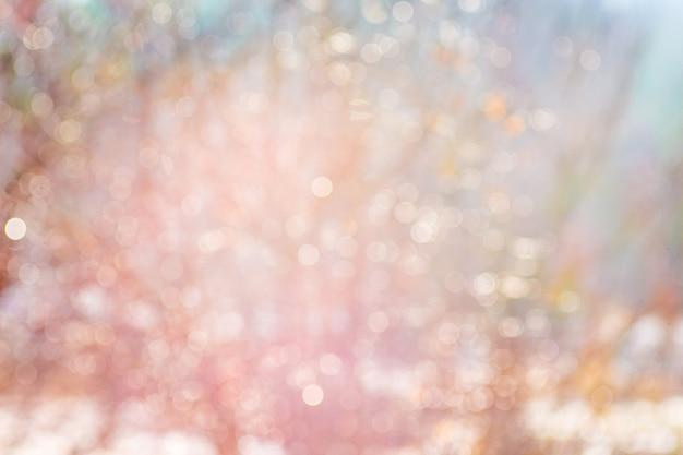 Fundo colorido vívido desfocado de árvores e arbustos em um dia claro de sol no inverno contra o sol_