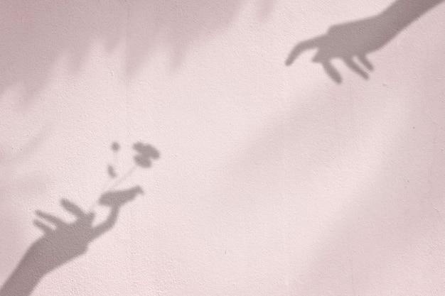 Fundo com flor na sombra da mão