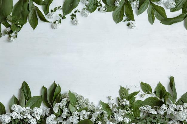 Fundo com folhas naturais e ramos de flores isolados.