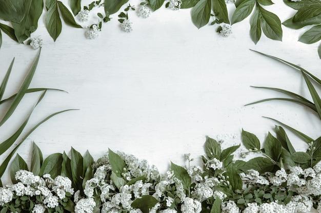 Fundo com folhas naturais e ramos de flores isolados