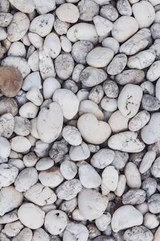 Fundo com pedras do mar colorido
