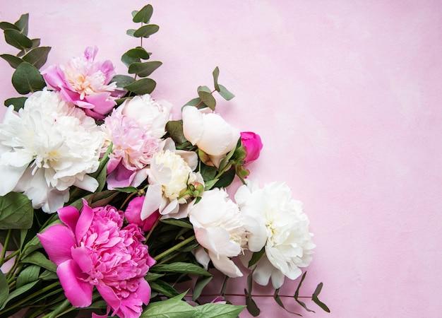 Fundo com peônias rosa