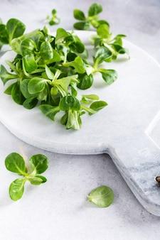 Fundo com salada de campo verde fresco