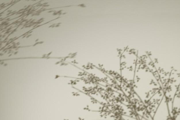 Fundo com sombra de ramos florais