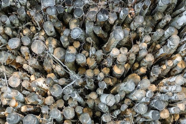Fundo com textura de toras de madeira natural,