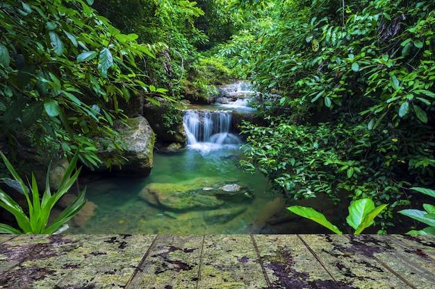 Fundo da cachoeira com o balcão de madeira coberto pelo líquene.