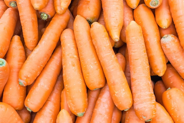 Fundo da cenoura