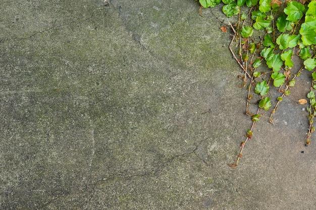 Fundo da parede de pedra envelhecida