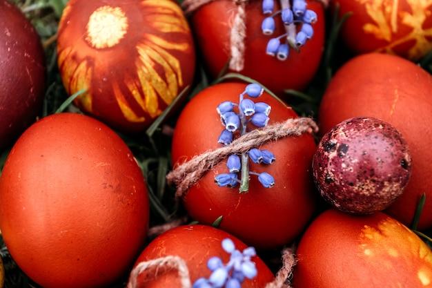Fundo da páscoa, ovo da páscoa vermelho decorado com flor azul. no fundo brilhante grama natural.